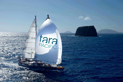tara-bateau