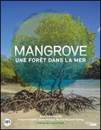 Couverture mangrove