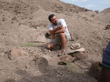 Australopithèque 1