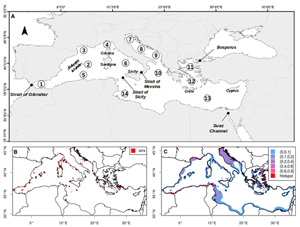 carte bassin mediterranéen