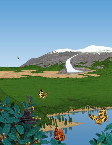 paysage groenland image