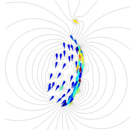Simulation_poissons_FILELLA
