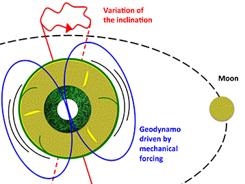 The gravitational effects associated with the presence of the Moon and Sun cause cyclical deformation of the Earth's mantle and wobbles in its rotation axis. This mechanical forcing applied to the whole planet causes strong currents in the outer core, which is made up of a liquid iron alloy of very low viscosity. Such currents are enough to generate the Earth's magnetic field.