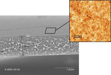 Picture Membrane 2