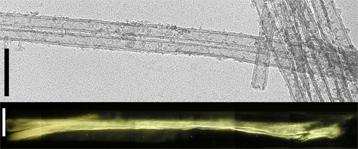 nanotubes image