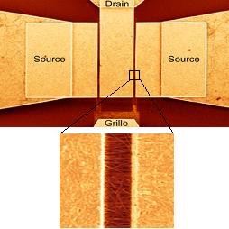 image transistors