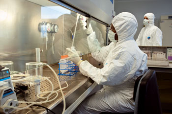 Biotherapy platform