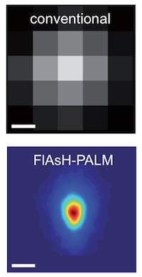 Super-resolution optical