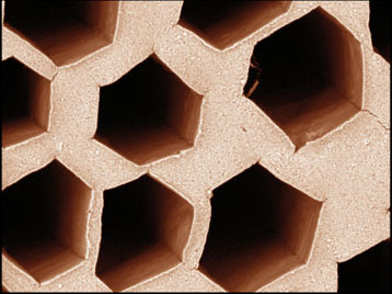 Material generated with the addition of the salt