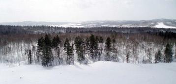Siberie 1
