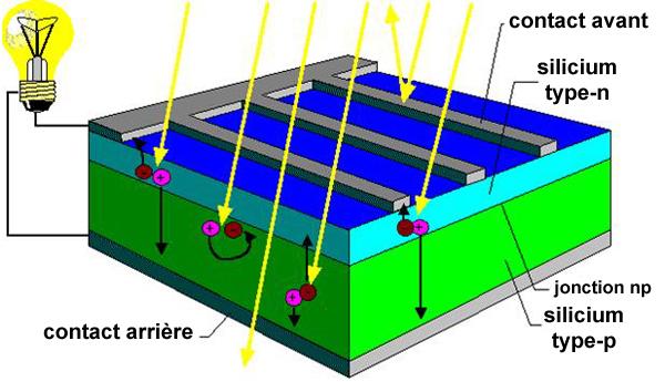 Image Cellule Phovolta 239 Que
